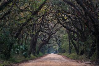 Botany Bay Road 2