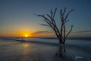 Botany Bay Sunrise
