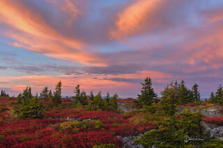 Early Morning Over The Dolly Sods