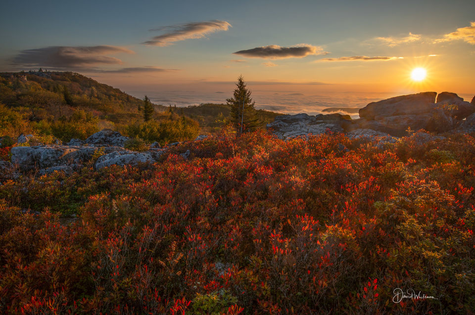 Sun Rise at Dolly Sods  print