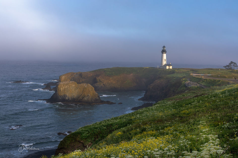 Yaquina Head Light House print