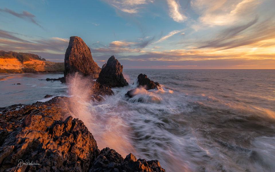 Seals Rock print