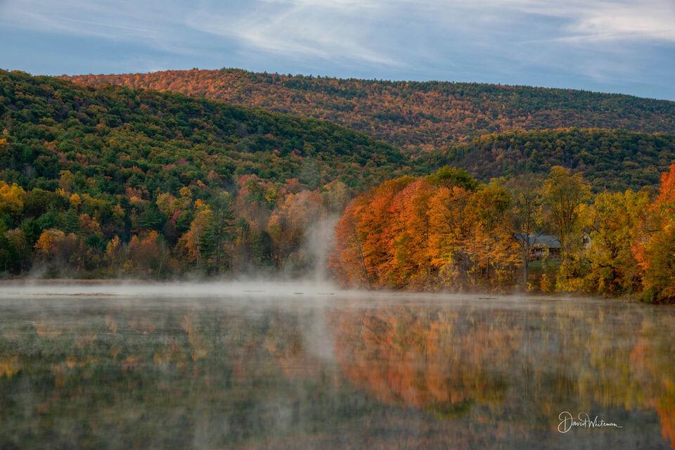 Reflective Fall Color print