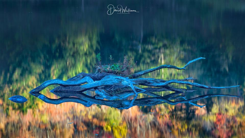 Falls Reflections print