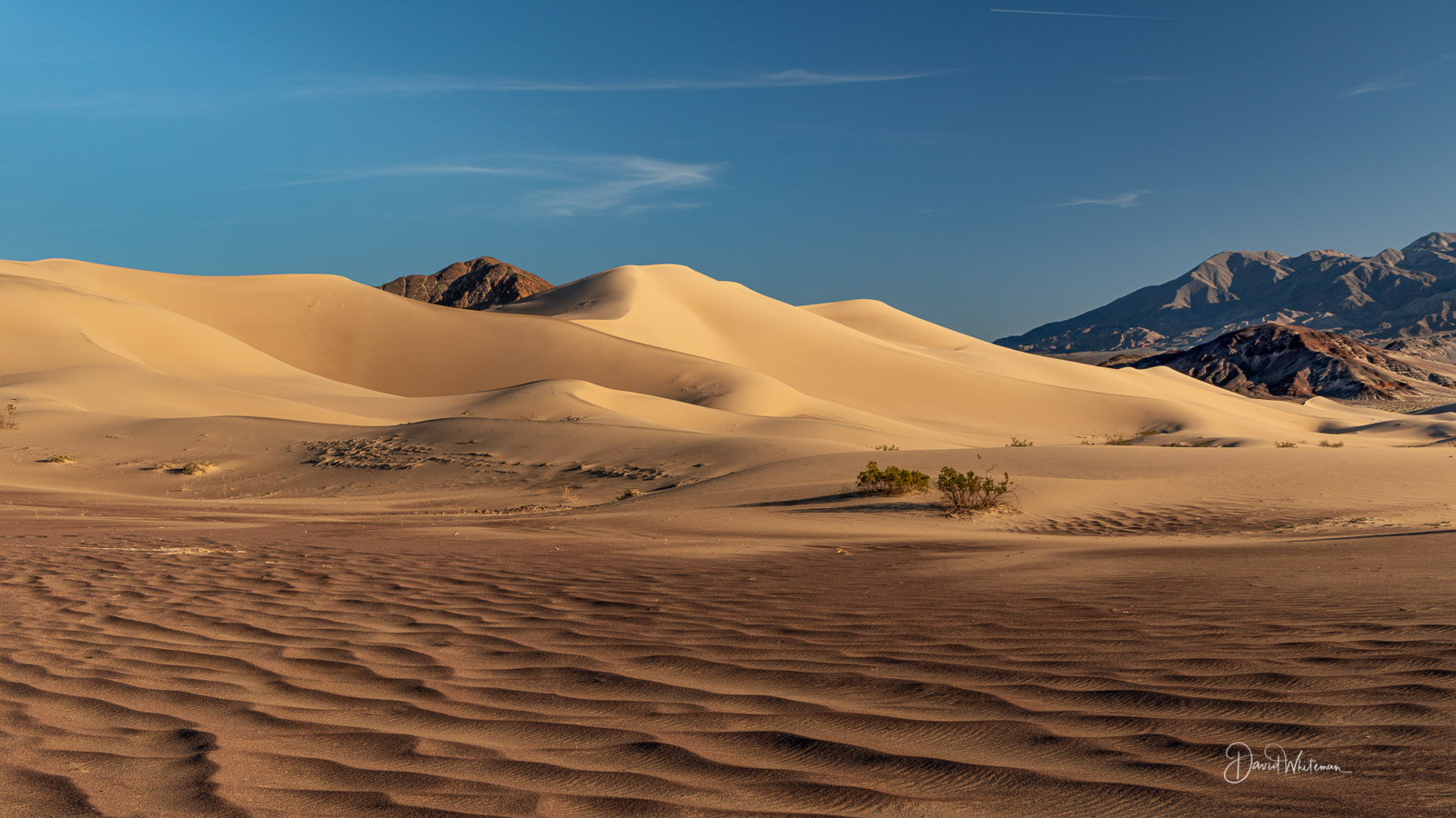 The Base Of The Ibex Dunes