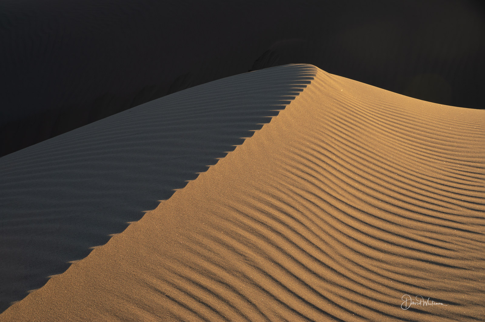 Light To Shadow On The Ibex Dunes